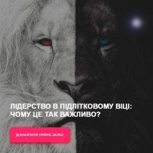 фейсбук, таргетинг, офлайн курс, продвижение, лев, король лев